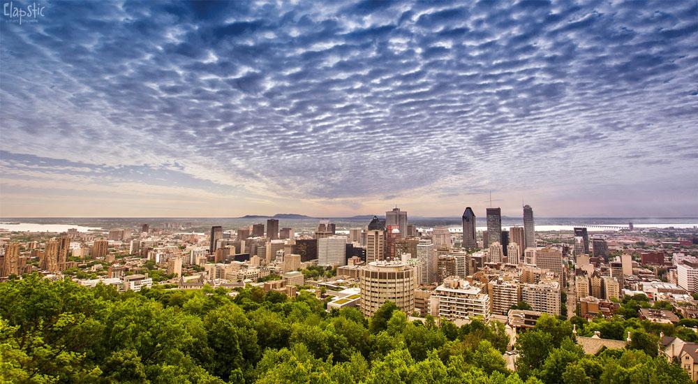 Mont-Royal - Montréal - hiking - plein air - vue - views